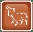 western zodiac capricorn