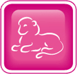 western zodiac leo